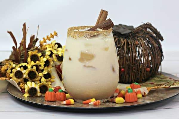 A cocktail in a stemless wine glass garnished with sugar and cinnamon sticks with an artificial flower arrangement and wicker pumpkin